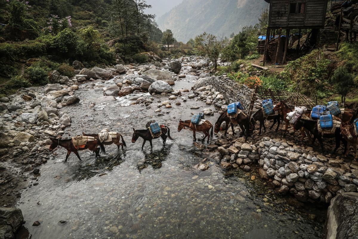 iancorless.com_Nepal2014_7-1548